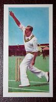 India Cricketer  Ghulam Ahmed    Action Photo Card