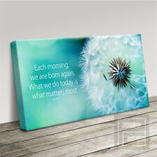 INSPIRATIONAL BUDDHA QUOTE WITH DANDELION CANVAS ART PRINT PICTURE Art Williams