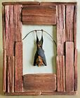 P14 Taxidermy Hanging Bat Rustic style Frame Display collectible specimen oddity