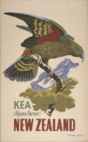 "Vintage Illustrated Travel Poster CANVAS PRINT New Zealand Kea 24""X16"""