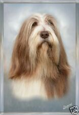 Bearded Collie A6 Blank Card Design No 9 By Starprint