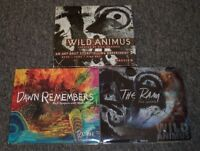 3 Rich Shapero CDs~Wild Animus Preview~The Ram~Dawn Remembers~Folk Rock~FastShip