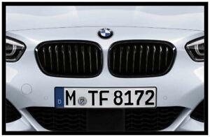 Original BMW 1er F20 F21 M PERFORMANCE Ziergitter schwarz 51712357461 + 2357462