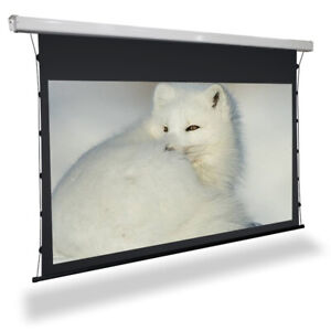 150in ALR Black Diamond Projector screen. 4k/8k/3d, tab-tensioned 16:9 electric
