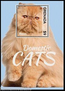 Grenada 2013 MNH MS, Perssian, Domestic Cats