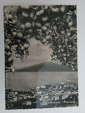 Vintage post card Postcard - Sorrento Italy - Panorama  with lemons 1950's