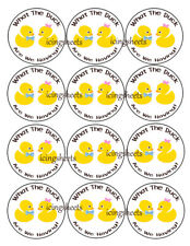 Duck Ducky baby gender reveal edible wafer cookie toppers cupcake tops
