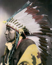 """SEGO SHOSHONE NATIVE AMERICAN INDIAN 1899 8x10"""" HAND COLOR TINTED PHOTOGRAPH"""