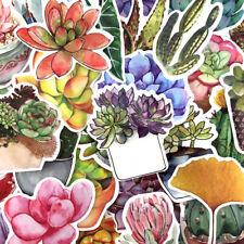 71 pcs Succulent Plants Skateboard Luggage Waterproof Stickers Sticker Vinyl Mix