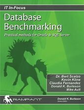 Database Benchmarking: Practical Methods for Oracle & SQL Server (IT In-Focus