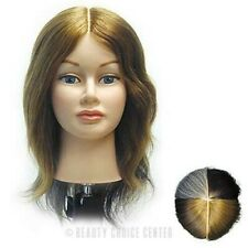 BURMAX Celebrity Tammie / 4 section multi-color hair/color trainer/manikin