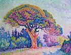The Pine Tree At Saint Tropez Paul Signac Painting Print CANVAS Home Decor Small
