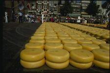 140093 Gouda Cheese A4 Photo Print