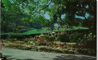 Honolulu Manoa Valley Waioli Tea Room Postcard 1950s