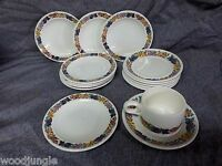 15 pc RARE Vintage WEDGWOOD ENGLAND HEREFORD Dessert Plates & CUP FRUITS GRAPES