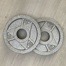 (2) 5lb Plates For 2� Barbell - 10 Total Pounds Weights