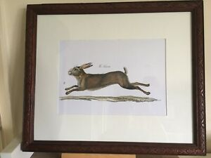 """Lovely Vintage/country Style French Hare Picture In A Carved Wood Frame 19x16"""""""