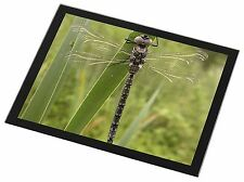 Dragonfly Print Black Rim Glass Placemat Animal Table Gift, IDR-4GP