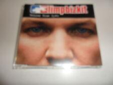 CD Limpbizkit – Behind Blue Eyes