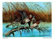 "DUCKS UNLIMITED PRINT ""WOOD DUCKS"" Canadian Geese Mallard Pintail DU PHEASANTS"