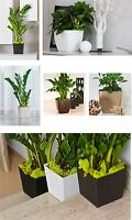 Indoor Outdoor Plastic Plant Flower Pot Garden Home Decor Wedding Square Rattan