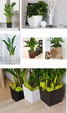 Indoor Outdoor Plastic Plant Flower Pot Garden Home Decor Wedding Square Rattan