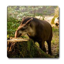 Tapir Animal Coaster