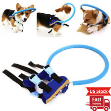 New listing Blind Dog Harness Vest Blind Dogs Vest Ring for Dogs with Sick Eyes Pet Xs/S/M