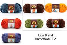 Lion Brand Hometown USA Super Bulky Yarn Color Choice Loom Knit Crochet