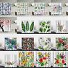 180x180cm Waterproof Floral Bathroom Shower Curtain Sheer Panel Decor w/12 Hooks