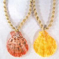 12 FAN SHELL HEMP NECKLACES #001 bulk seashell jewelry new necklace shells bulk