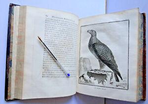 BUFFON HISTOIRE NATURELLE DES OISEAUX T 1 in-4 1770 EDITION ORIGINALE RAPACES