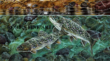 """Canada Goose Art Print """"Guarded Moment"""" Gosling Brook Trout 8x10 by Roby Baer"""