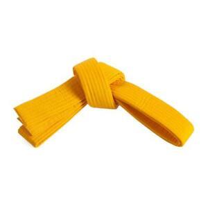 Century Martial Arts GOLD Belt Size 3 New Karate Tae Kwon Do Kenpo