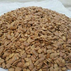 Akuamma Seeds 100 Grams
