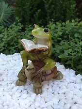 Miniature Dollhouse Fairy Garden ~ Frog Reading Book on Turtle ~ New