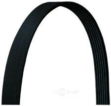 Dayco Products Premium Serpentine Belt 6PVK2250 12 Month 12,000 Mile Warranty