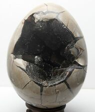 7.92lb Dragon Septarian Septarium Sphere Egg Natural Geode Crystal Madagascar