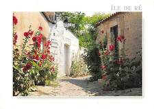 France Ile de Re Lamp House Fleurs Flowers