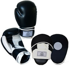 Focus Pads and Boxing Gloves   Set Hook & Jabs Mitts Punch Bag Gym Training MMA
