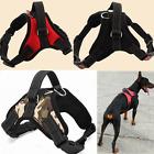 Large Dog Soft Adjustable Harness Pet Collar Pet Walk Out Hand Strap Vest Collar