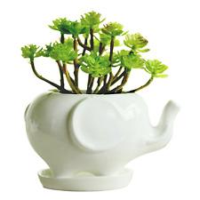 Elephant Ceramic Succulent Planter Flower Pot Box w/ Saucer Indoor White NEW