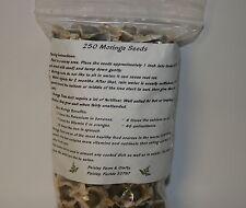 2.5 oz Moringa Organic Seeds - US Customs Cleared Paisley Farm & Craft