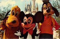 1960s Walt Disney World Orlando FL Mickey Mouse Pluto Goofy Unused Vintage PC