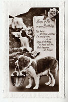 DOG, WITH PUPPIES IN BASKET - Birthday - c1920s era real photo postcard