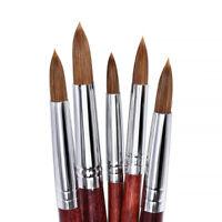 Sz 8/10/12/14/16 Kolinsky Hair Sable Acrylic Nail Brush Nail Art Manicure Tools