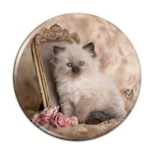 Ragdoll Tiffany Cat Victorian Roses Button Refrigerator Magnet
