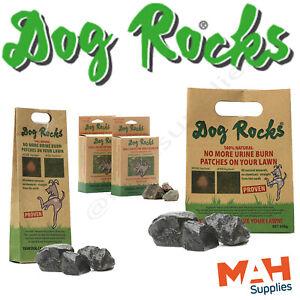 Dog Rocks Dog Urine Burn Patch Prevention 100% Natural Prevent Grass Burn Stains