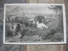 CPA tableau animaux Salon peinture 1906 Bonnefoy L'enfant adoptif Moutons chèvre