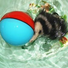 Hot Beaver Weasel Rolling Motor Ball Pet Cat Dog Kids Moving Jumping L0C0 U7N8